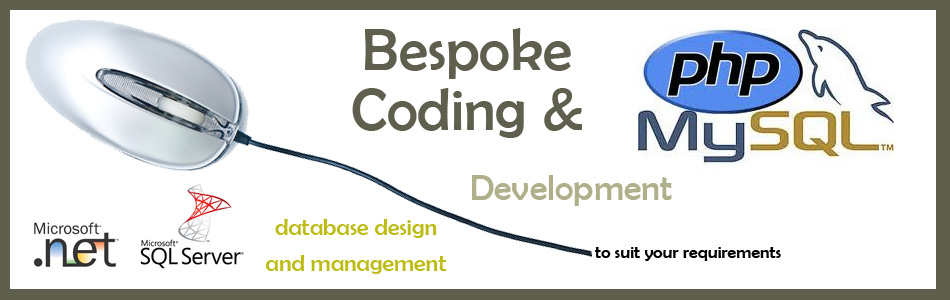 Bespoke Coding and Development
