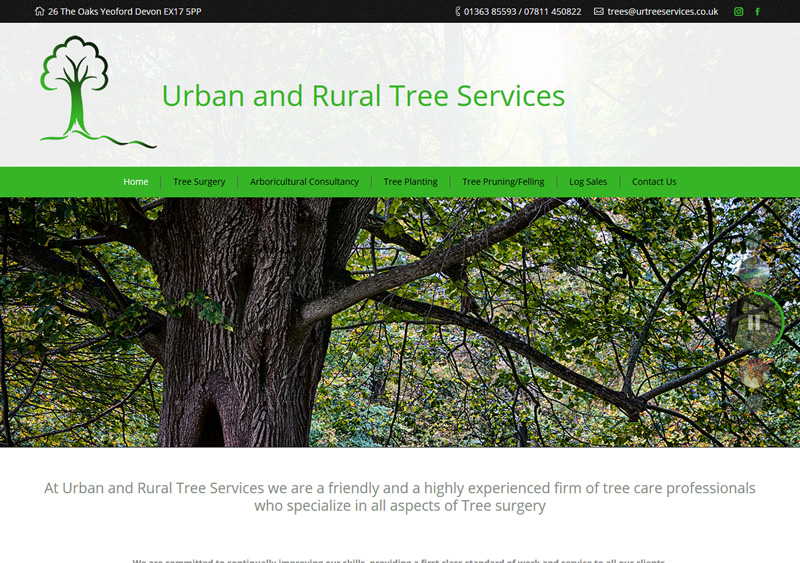 Tree Surgeon Devon