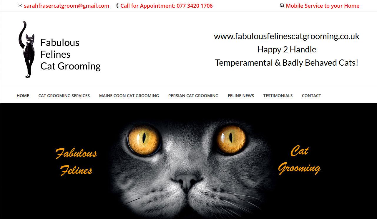 Fabulous Felines Cat Grooming